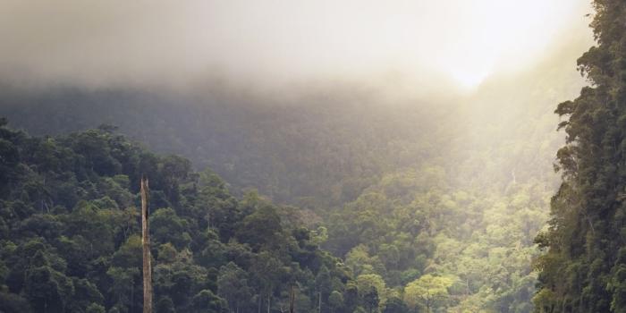 Konzept MABEWO AG für Ressourcenschutz: Land, Wasser, Nährstoffe und Energie